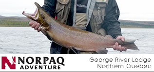 Norpaq Adventures - Salmon fishing